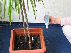 Su geçirmez Toprak Su Analiz Cihazı PCE-PH20S'nin kullanım görüntüsü.